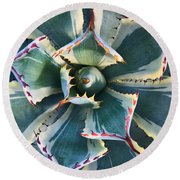 Pinwheel Succulent Round Beach Towel