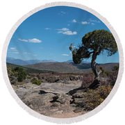 Pinyon Pine With North Rim In Background Black Canyon Of The Gunnison Round Beach Towel