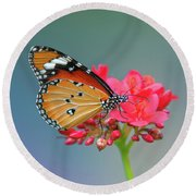 Plain Tiger Or African Monarch Butterfly Dthn0246 Round Beach Towel