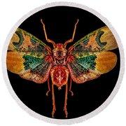 Planthopper Lanternfly Round Beach Towel