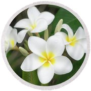 Pleasing Plumeria Round Beach Towel