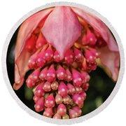 Pomegranate Flower Round Beach Towel