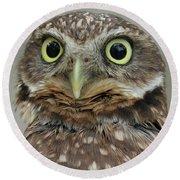 Portrait Of Burrowing Owl Round Beach Towel