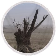 Round Beach Towel featuring the photograph Prayer Of The Ent by Davor Zerjav