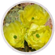 Prickly Pear Cactus Trio Bloom Round Beach Towel