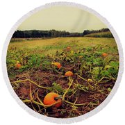 Round Beach Towel featuring the photograph Pumpkin Picking by Candice Trimble