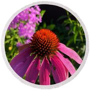 Round Beach Towel featuring the photograph Purple Coneflower by Lukas Miller