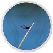 Purple Dragonfly Round Beach Towel