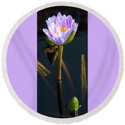 Purple Elegance Round Beach Towel