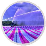 Round Beach Towel featuring the photograph Purple Grain by Wayne King