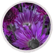Purple Power Chrysanthemum  Round Beach Towel