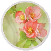 Round Beach Towel featuring the photograph Quatro Quince by Emily Johnson