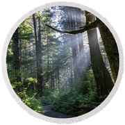 Rain Forest At La Push Round Beach Towel