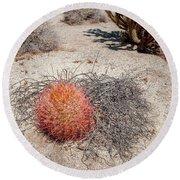 Red Barrel Cactus And Mesquite Round Beach Towel