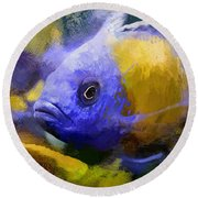 Red Fin Borleyi Cichlid Artwork Round Beach Towel