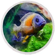 Red Fin Borleyi Cichlid Round Beach Towel