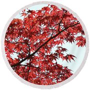 Red Japanese Maple Leaves Round Beach Towel