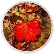 Red Leaf On Mossy Rock Round Beach Towel