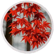 Round Beach Towel featuring the photograph Red Leaves by Cindy Lark Hartman