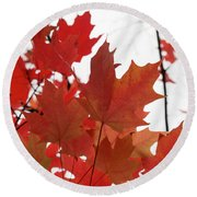 Red Maple Leaves 2 Round Beach Towel