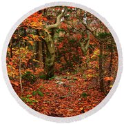 Round Beach Towel featuring the photograph Red Oaks And At Blaze Horizontal by Raymond Salani III