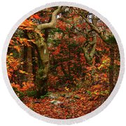 Round Beach Towel featuring the photograph Red Oaks And At Blaze Vertical by Raymond Salani III