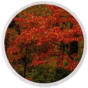 Red Oaks And Dogwoods Round Beach Towel