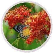 Red-spot Jezebel Butterfly Dthn0235 Round Beach Towel