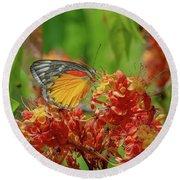 Round Beach Towel featuring the photograph Red-spot Jezebel Butterfly Dthn0236 by Gerry Gantt