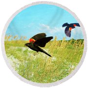 Red-winged Blackbirds Round Beach Towel