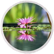 Reflecting Water Lily  Round Beach Towel