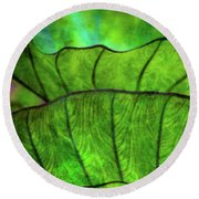 Repetition 5155 Idp_2 Round Beach Towel