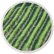 Riesling On The Rhine Round Beach Towel
