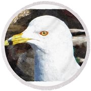 Ringbilled Gull Portrait Round Beach Towel