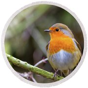 Robin. On Guard Round Beach Towel