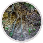 Round Beach Towel featuring the photograph Root System by Jon Burch Photography