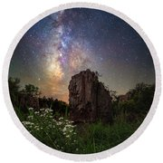 Round Beach Towel featuring the photograph Royalty  by Aaron J Groen