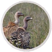 Ruppell's Griffons Round Beach Towel