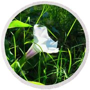 Round Beach Towel featuring the photograph Sacred Datura - Fairy Flower by Judy Kennedy