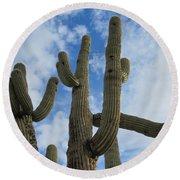 Saguaro Clique Round Beach Towel