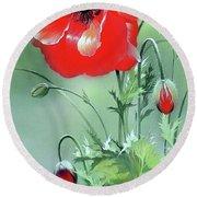 Scarlet Poppy Flower Round Beach Towel