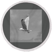 Seagull Over Llandudno Round Beach Towel