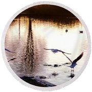Seagulls In The Morning Round Beach Towel