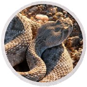 Round Beach Towel featuring the photograph Serpent Of The Southwest by Judy Kennedy