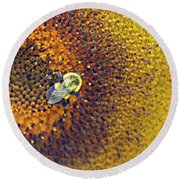 Round Beach Towel featuring the photograph Shades Of Sun by Candice Trimble