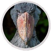 Shoe-billed Stork Round Beach Towel