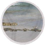 Shorebird Round Beach Towel