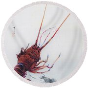 Shrimp And Lobster - Digital Remastered Edition Round Beach Towel