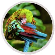 Shy Parrot Round Beach Towel