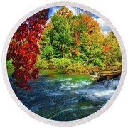 Round Beach Towel featuring the photograph Sidelined Beauty by Lynn Bauer
